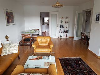 Spacious 70 m2 central Apartment with great park view