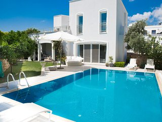 Important Group | BD429 3 Bedroom Modern Villa in Bodrum