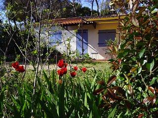 'Le cabanon'- Gîte de charme en Provence - Calme, confort, intimité