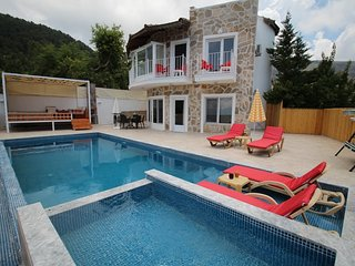 Secluded Honeymoon Villa With Jacuzzi, Seaview and Private Pool Villa in Turkey