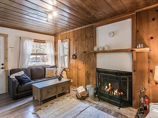 Cozy Vintage Cabin w/ Spacious Backyard, Two Decks - Completely Remodeled