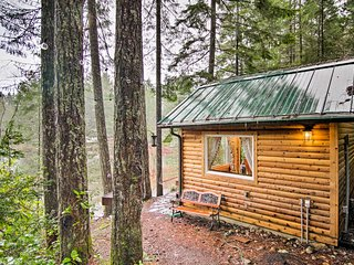 NEW! Cozy Waterfront Cabin on Private Collins Lake