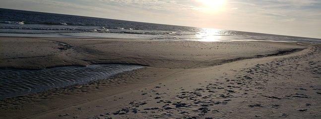 A peaceful walk along the shoreline.