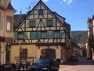 Coeur d'Alsace: Appartement de charme sur la route des vins.