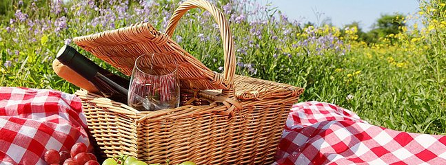 Nature Walk & Picnic Available in Season