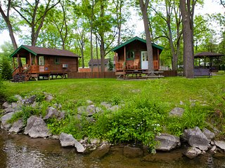 Finger Lakes Log Cabin near Watkins Glen: Keuka Cottage