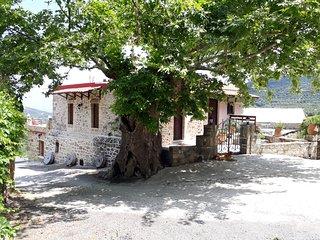 Traditional house koukounara