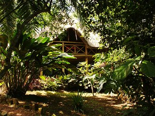 Kibale Forest Camp a very good choice for a wonderful vacational experience