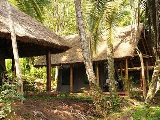 Stay in one of the tents at Kibale Forest Camp and have a relaxing experience