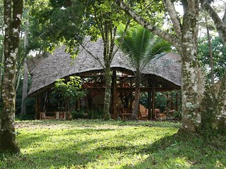 Have a great experience staying in one the tents at Kibale Forest Camp