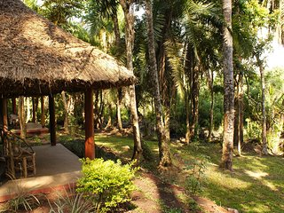 Kibale Forest Camp a great choice for a great experience