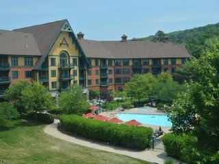 Two -1 bedroom lock-off units at Mountain Creek Resort (Appalachian)