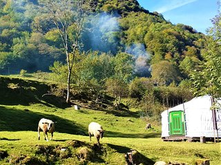 Yurt / Yourte Mongole, in a meadow near river in the mountains. Hautes Pyrenees