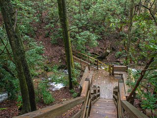 Creekside home w/ private hot tub, pool table, decks & forest view!