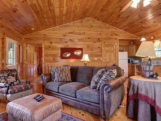 Dog-friendly mountainside cabin w/hot tub, fireplace & pool table