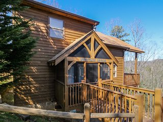 Dog-friendly mountain view cabin w/ pool table & private hot tub