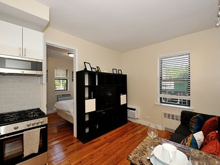 NYU Central #1 - One Bedroom Apartment - Apartment