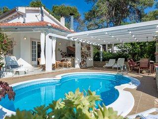 2 bedroom Villa in Brgulje, Zadarska Zupanija, Croatia - 5053518