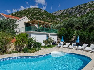 Beautiful Holiday Home with swimming pool(PEAS-1)
