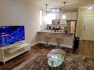 2 Br Bath Luxury Apartment, Heart of Atlanta