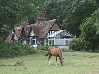 Luxury large Forest Lodge,idyllic location&fabulous games room! 1/2TERM £300 OFF