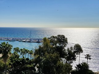 Great 2 Bedroom Skol Apartment Marbella