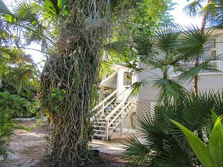 Coconut Pool House