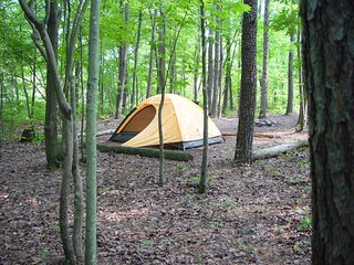 Primitive Camp Site at Little River Canyon