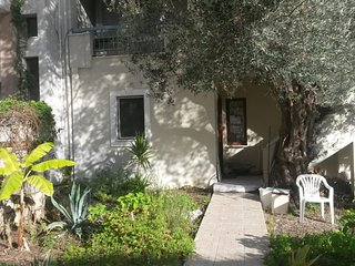 Olive Grove Hibiscus apartment