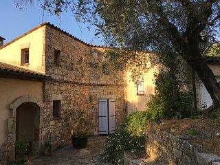Mas provençal au milieu des oliviers