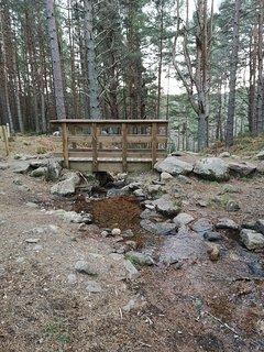 Trail walk at Cambus o Mey.