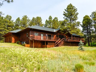 Spacious, high-end cabin with gourmet kitchen + wet bar,
