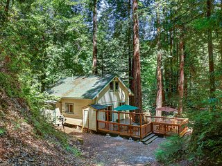NEW LISTING! Dog-friendly home w/free WiFi & full kitchen! Drive to coast/trails