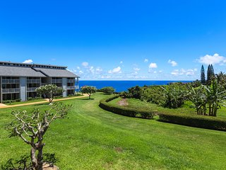 Waterfront condo w/ a shared pool, hot tub, & furnished lanai w/ ocean views