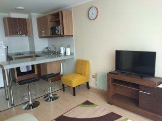 Cómodo y acogedor departamento Temuco centro