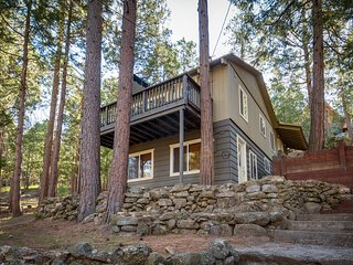 Quiet, warm cabin in wooded setting w/ foosball table and room for the family!