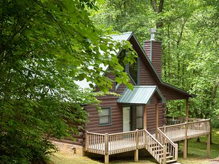 Charming dog-friendly cabin with private hot tub, outdoor fire pit, and privacy