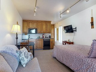 NEW LISTING! Cozy studio condo near skiing and town - close to everything!