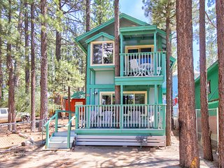 NEW LISTING! Cozy dog-friendly cabin near shops, restaurants, lake & skiing