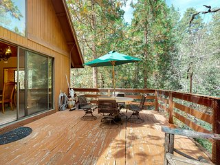 Secluded cabin w/large deck & wood stove in peaceful forest setting