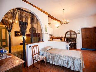 Antica Molina - Appartamento Riva