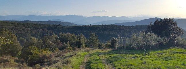 Vue sur les Pyrénées dans les sentiers de notre Domaine