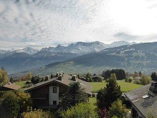 Bel Appart cosy 6p, à 100m des pistes de ski !