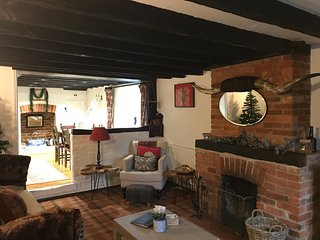 Country Cottage in lovely Village near Farnham, Guildford, Farnborough