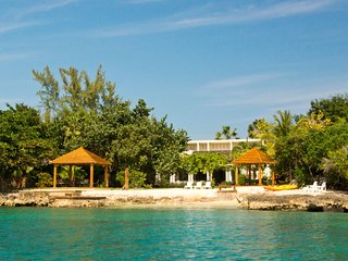 Seagrapes - Jamaica
