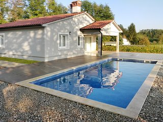 Brand new villa features a garden, pool and view on a nearby vineyard