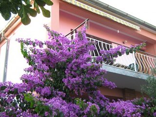 Cozy apartment in the center of Bibinje with Parking, Air conditioning, Balcony,