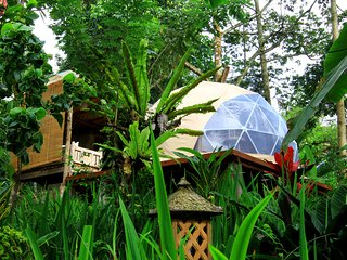Bali Jungle Camping