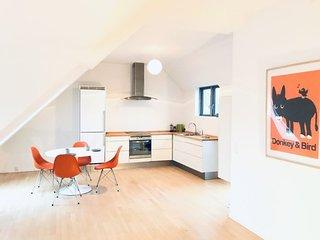Large Copenhagen penthouse apartment near Noerreport