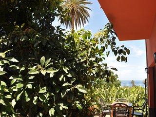 Sunny Terrace with Ocean Views between banana plantation